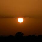 The Sun Hanging from a Cloud by Sandra  Aguirre