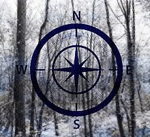 Compass by Mitra Dunn
