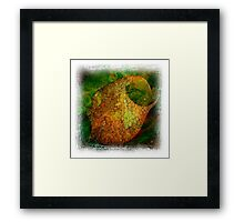 The Atlas Of Dreams - Color Plate 46 Framed Print