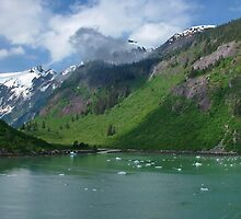 Inside Passage to Alaska by AnnDixon