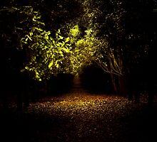 A light in the dark by lizwilsonphotog
