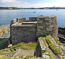 Little Dennis Blockhouse, Falmouth by Rod Johnson