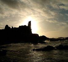 Dunure Castle by Stuart  Fellowes