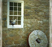 Gristmill With Chicken by Kenneth Hoffman