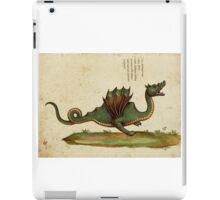 Vintage Dragon iPad Case/Skin