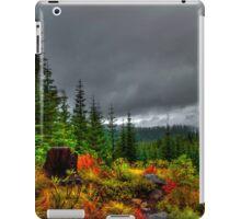 A Look From On High ~ Oregon High Cascades ~ iPad Case/Skin