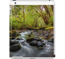 Let It Flow ~ Whittaker Creek ~ iPad Case/Skin