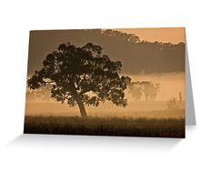 Early Morning Fog in Gungahlin/ACT/Australia (1) Greeting Card