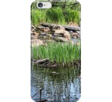 Pond at Belleuve iPhone Case/Skin
