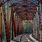 Trestle, Index Washington by Scott Johnson