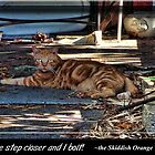 Orange Tabby with the Broken Eye by GolemAura