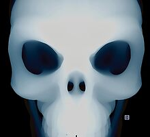 Skull x-ray by anwdesign