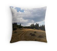 Late Summer Meadows and Haystacks Throw Pillow
