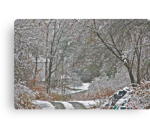 11/10/13 First Snow 2 Canvas Print