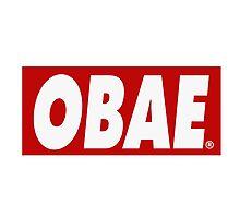 lame. - OBAE Photographic Print