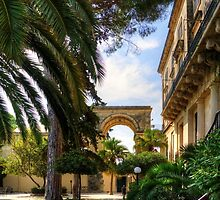 Corfu Garden by Tom Gomez