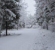 Icy Wonderland by AwkwardEggplant