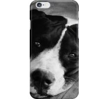 Black and White Pup iPhone Case/Skin