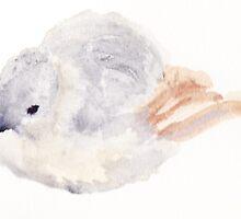 Fluffy Bird 2: More Fluff by cimourdain