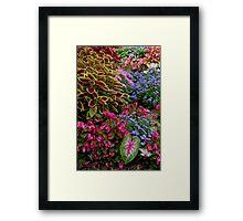 The Heart of the Garden Framed Print