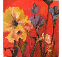 June Garden Photographic Print