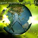 The Biggest Mystery Of All by Ann Morgan