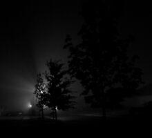 Fog in the street light 1 by jclegge
