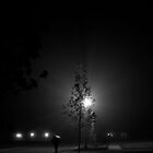 TREE IN FOG AT NIGHT by jclegge