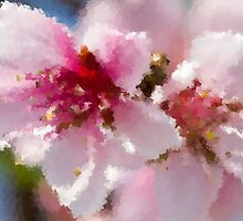 peach blossom in spring by spetenfia