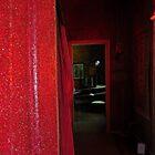 Rush of red by Karen01