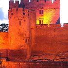 Cahir Castle Ireland by Desaster