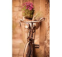 Flower bicycle @ The Vaults Cafe, Oxford Photographic Print