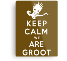 Keep Calm We Are Groot Metal Print