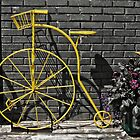 The Bike by thomr