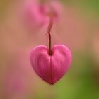Little love by JBlaminsky