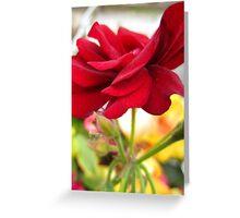 Wave of Petals Greeting Card