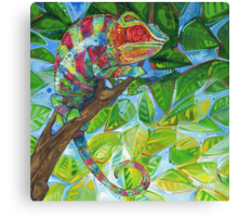 Panther chameleon Canvas Print