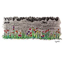 Spring flowers and stone wall Photographic Print