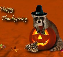 Thanksgiving Pilgrim Raccoon by jkartlife