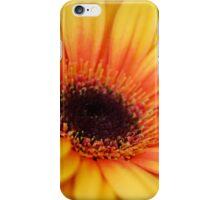 yellow gerbera daisy iPhone Case/Skin