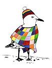 Chilli the Seagull by Jacqueline Eden