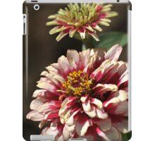 Mature White Zinnia iPad Case/Skin