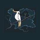 White cockatoo by maria paterson