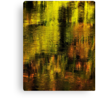 Gold on Rhone river Canvas Print