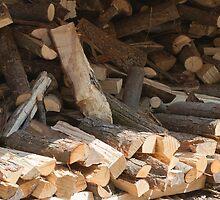firewood by spetenfia