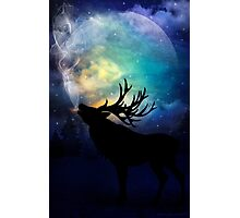 Mid-Winter Moon - The Call Photographic Print