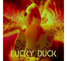Lucky Duck Photographic Print