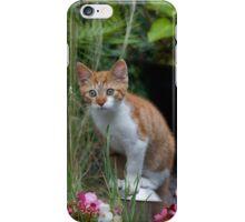 Garden Kitty iPhone Case/Skin