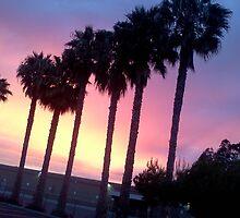 California Sunset by Faith It Is