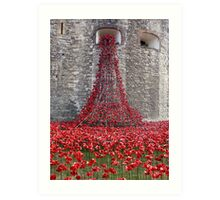 A Cascade Of Poppies At The Tower Of London Art Print